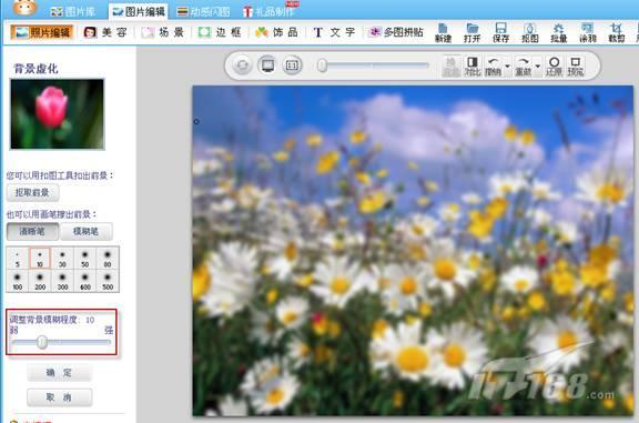 """图3.7.7:对照片执行""""背景虚化""""命令后的效果图   为了让背景更具梦幻感,我们再对其应用一下""""影楼特效""""。执行""""照片编辑→影楼特效""""命令,对其应用""""冷蓝""""效果,效果如图3.7.8示。(林栖者注:这张梦幻背景图,请保存好,我们将在下一节内容中继续使用)"""