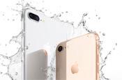 iPhone 8价格暴跌